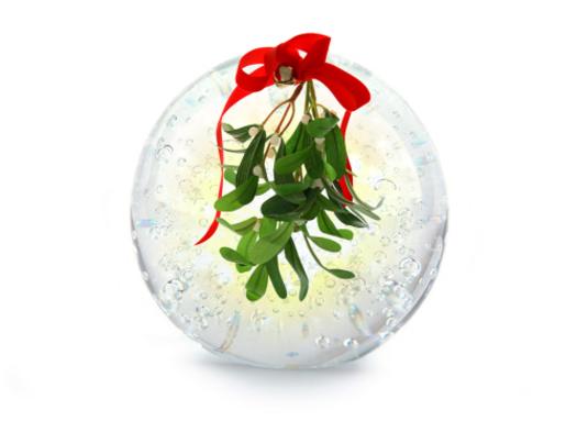 Buy Online Moonlight Mistletoe Fragrance Oil Fragrances Flavours