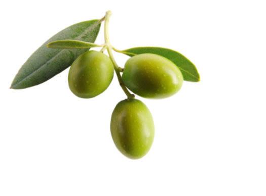Natural Olive Oil For Face