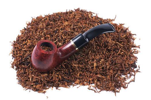 Tobacco u0026 Patchouli Fragrance Oil  sc 1 st  Gracefruit & Tobacco u0026amp; Patchouli Fragrance Oil | Fragrance Oils | Gracefruit