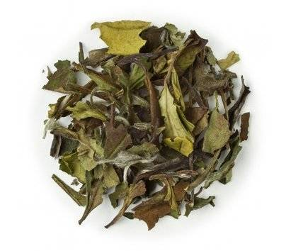 Gracenotes Natural Sencha Tea Fragrance