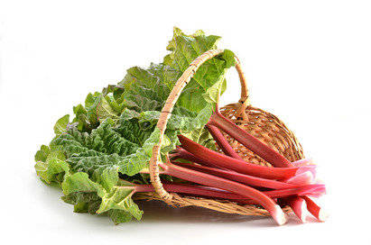 Rhubarb Fragrance Oil