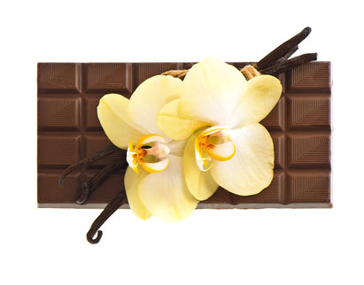 Sucre de Cocoa Fragrance Oil