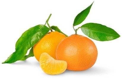 Tangerine Fragrance Oil